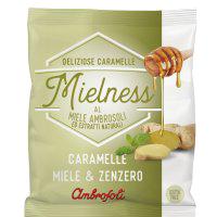 Mielness-Miele-Zenzero_box_prodotti.png